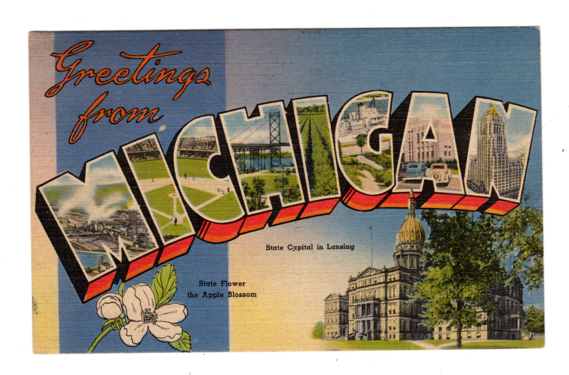 Linen postcard  Greetings from Michigan  Large letter  State Capital in  Lansing, State Flower Apple Blossom  1958